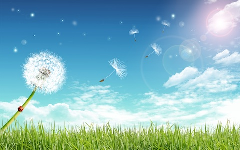 """Un """"vânt"""" subtil aduna tot felul de resturi și mizerii din aurele noastre"""